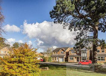 Thumbnail 4 bedroom detached house to rent in Princes Meadow, Gosforth, Newcastle Upon Tyne