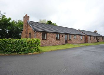 Thumbnail 3 bedroom bungalow to rent in Shepherds Bungalow, Dockinsall Lane, Out Rawcliffe