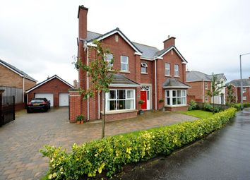 Thumbnail 6 bed detached house for sale in Millreagh, Dundonald, Belfast