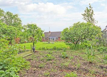 Thumbnail 3 bedroom detached bungalow for sale in Derwent Drive, Swindon