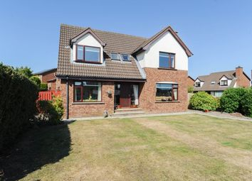Thumbnail 4 bed detached house for sale in Glencroft Drive, Comber, Newtownards