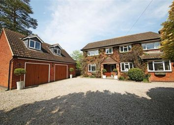 Thumbnail 4 bed detached house for sale in Hinckley Road, Stoke Golding, Nuneaton