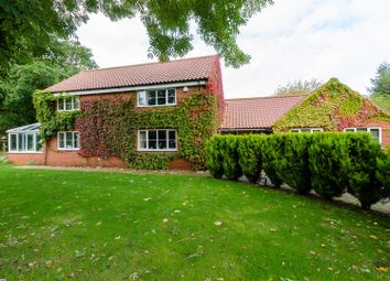 Thumbnail 4 bed detached house for sale in Mill Road, Salhouse, Norwich