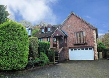 Thumbnail 4 bed detached house to rent in Footwood Crescent, Shawclough
