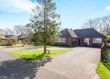 Thumbnail 3 bed bungalow for sale in Mill Vale Meadows, Milland, Liphook, Hampshire