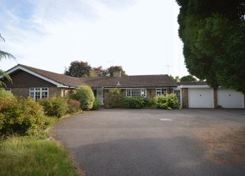 Thumbnail 4 bed bungalow for sale in Hedgehog Lane, Haslemere