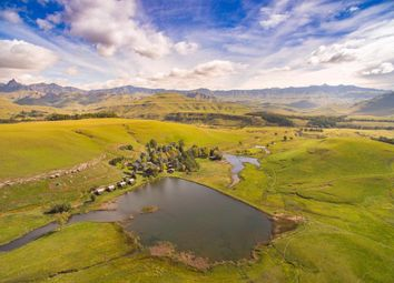 Thumbnail 24 bed property for sale in Underberg, 3257, South Africa