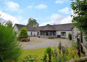 Thumbnail 4 bed detached bungalow for sale in Cromdale, Grantown-On-Spey