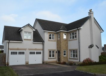 Thumbnail 4 bed detached house for sale in Cambus Avenue, Larbert