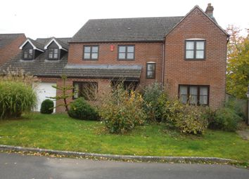 Thumbnail 5 bed detached house for sale in Hay On Wye, The Meadows