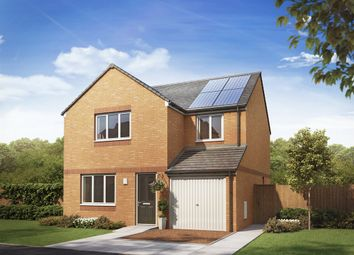 "Thumbnail 4 bed detached house for sale in ""The Leith"" at Etna Road, Falkirk"