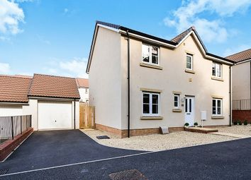Thumbnail 4 bed detached house for sale in Cornflower Way, Newton Abbot