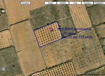 Thumbnail Land for sale in 30510 Yecla, Murcia, Spain