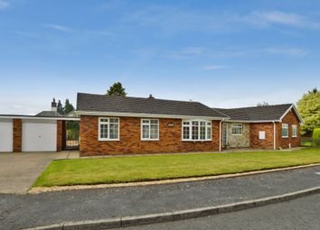 Thumbnail 3 bed detached bungalow to rent in The Conifers, Gresford, Wrexham