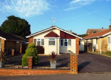 Thumbnail 4 bed bungalow for sale in Birch Close, Cowplain, Waterlooville