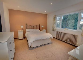 Thumbnail 4 bed detached bungalow for sale in New Road, Little Smeaton, Pontefract