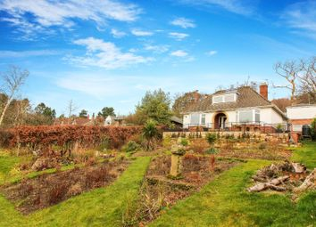 Thumbnail 4 bed detached house for sale in Hillside West, Rothbury, Morpeth