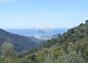 Thumbnail Land for sale in Negi, Seborga, Imperia, Liguria, Italy