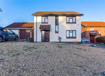 Thumbnail 6 bed detached house for sale in Egret Crescent, Colchester, Essex