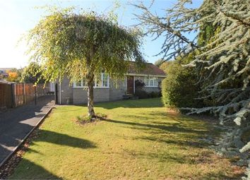 Thumbnail 2 bed detached bungalow for sale in Tor Gardens, East Ogwell, Newton Abbot, Devon.