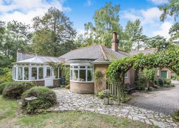 Thumbnail 4 bed bungalow for sale in St Leonards, Ringwood, Hampshire