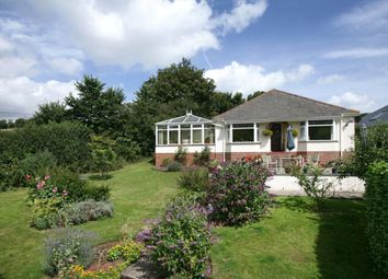 Thumbnail 3 bed detached bungalow for sale in Stokeinteignhead, Newton Abbot, Devon