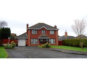 Thumbnail 4 bed detached house for sale in Burandell Manor, Lisburn
