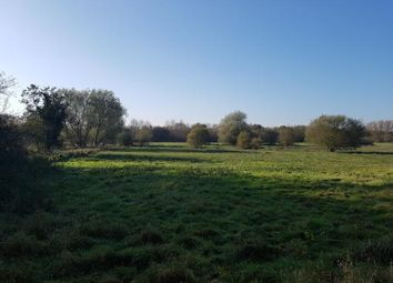 Thumbnail Land for sale in Norwich Road, Barham, Ipswich