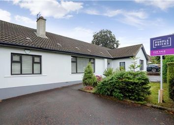 Thumbnail 5 bed detached house for sale in Ardmore Road, Holywood