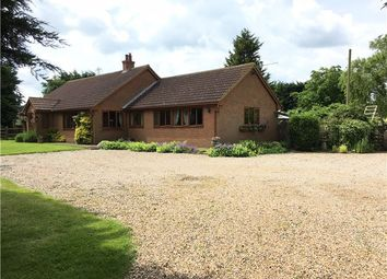 Thumbnail 4 bed detached bungalow for sale in Burnham Road, Latchingdon, Chelmsford
