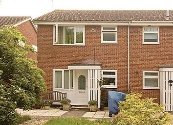 Thumbnail 1 bedroom semi-detached house to rent in Lavender Way, St. Ives, Huntingdon