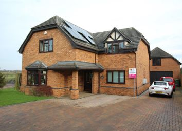 Thumbnail 4 bedroom property to rent in Gas Lane, Thorney, Peterborough