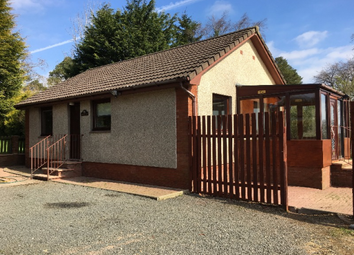 Thumbnail 2 bed bungalow to rent in Slamannan Road, Slamannan, Falkirk, 3Bb