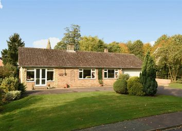 Thumbnail 4 bed detached bungalow for sale in The Bury, Pavenham, Bedford
