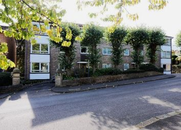 Thumbnail 2 bed flat for sale in 203 Graham Road, Sheffield