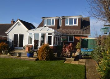 Thumbnail 4 bed detached bungalow for sale in Hulham Road, Exmouth, Devon