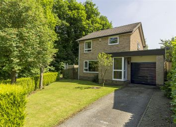 Thumbnail 4 bed detached house for sale in Redgrove Way, Walton, Chesterfield