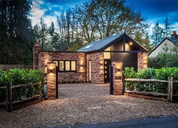 Thumbnail 2 bed bungalow for sale in Chobham, Woking, Surrey