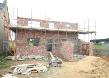 Thumbnail 3 bedroom detached house for sale in Smeeth Road, Marshland St. James, Wisbech