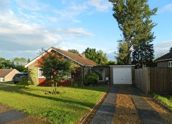 Thumbnail 3 bed bungalow for sale in Elmleigh, Midhurst