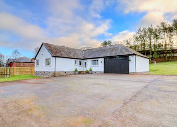 Thumbnail 4 bed bungalow for sale in Crocketford, Dumfries