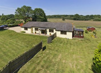 Thumbnail 4 bed detached bungalow for sale in Appledore, Ashford, Kent