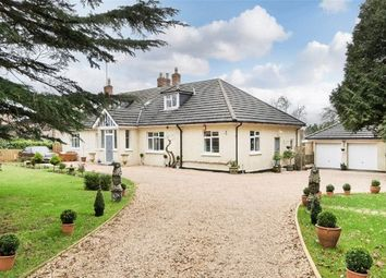 Thumbnail 6 bed detached bungalow for sale in Chilcompton, Somerset