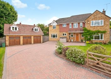 Thumbnail Detached house for sale in Cedar Close, Dorking