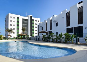 Thumbnail 3 bed apartment for sale in Mil Palmeras, Alicante, Valencia