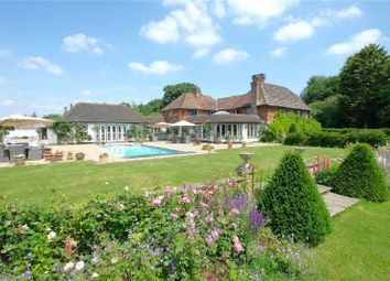 Roundstreet Common, Wisborough Green, Billingshurst, West Sussex RH14. 5 bed equestrian property for sale