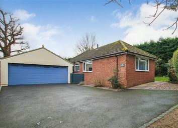 Thumbnail 4 bed detached bungalow for sale in West Street, Dormansland, Surrey