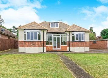 Thumbnail 3 bed bungalow to rent in Yarm Close, Leatherhead