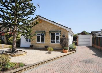 Thumbnail 2 bed bungalow to rent in Woolslope Road, West Moors, Ferndown