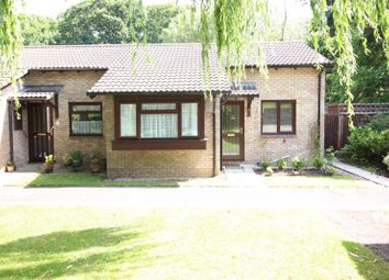 Thumbnail 2 bed bungalow to rent in Baden Close, New Milton